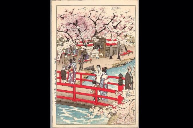 I ciliegi in fiore nell'arte giapponese