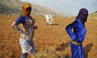 Confine tra Libano e Siria