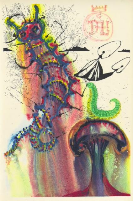 alice nel paese delle meraviglie illustrato pdf