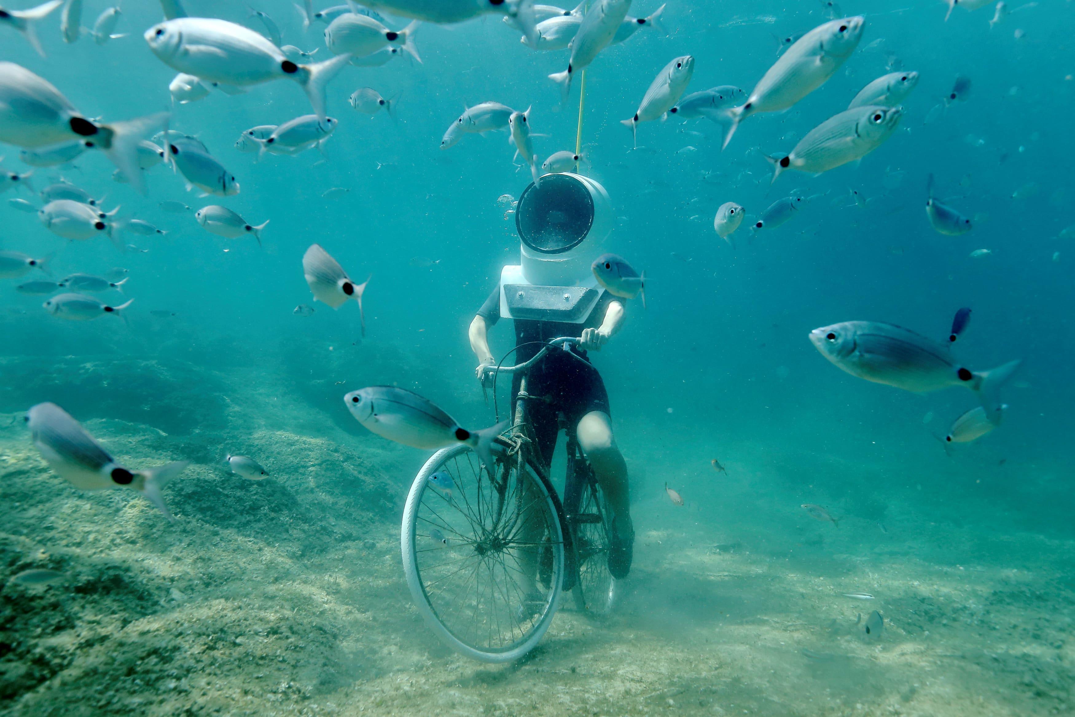 Underwater Park Pola Croazia