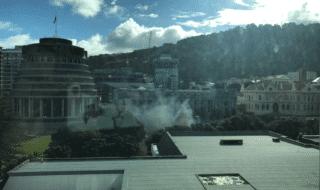 Un'immagine mostra il fumo salire nelle vicinanze del parlamento neozelandese