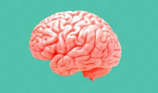 deja vu psicologia cervello