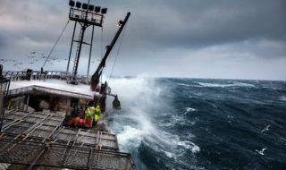 arnold-foto-pesca