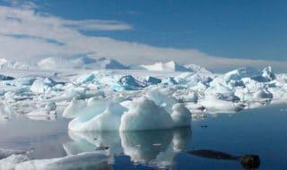 ghiacci antartide