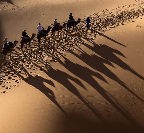 gallops morocco