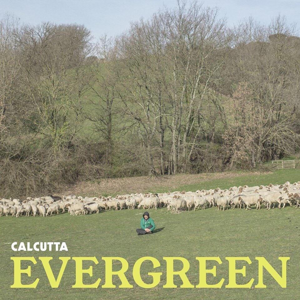Calcutta uscita nuovo album Evergreen
