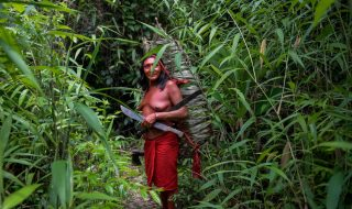 foresta amazzonica soggetto giuridico