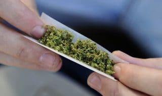 polizia marijuana