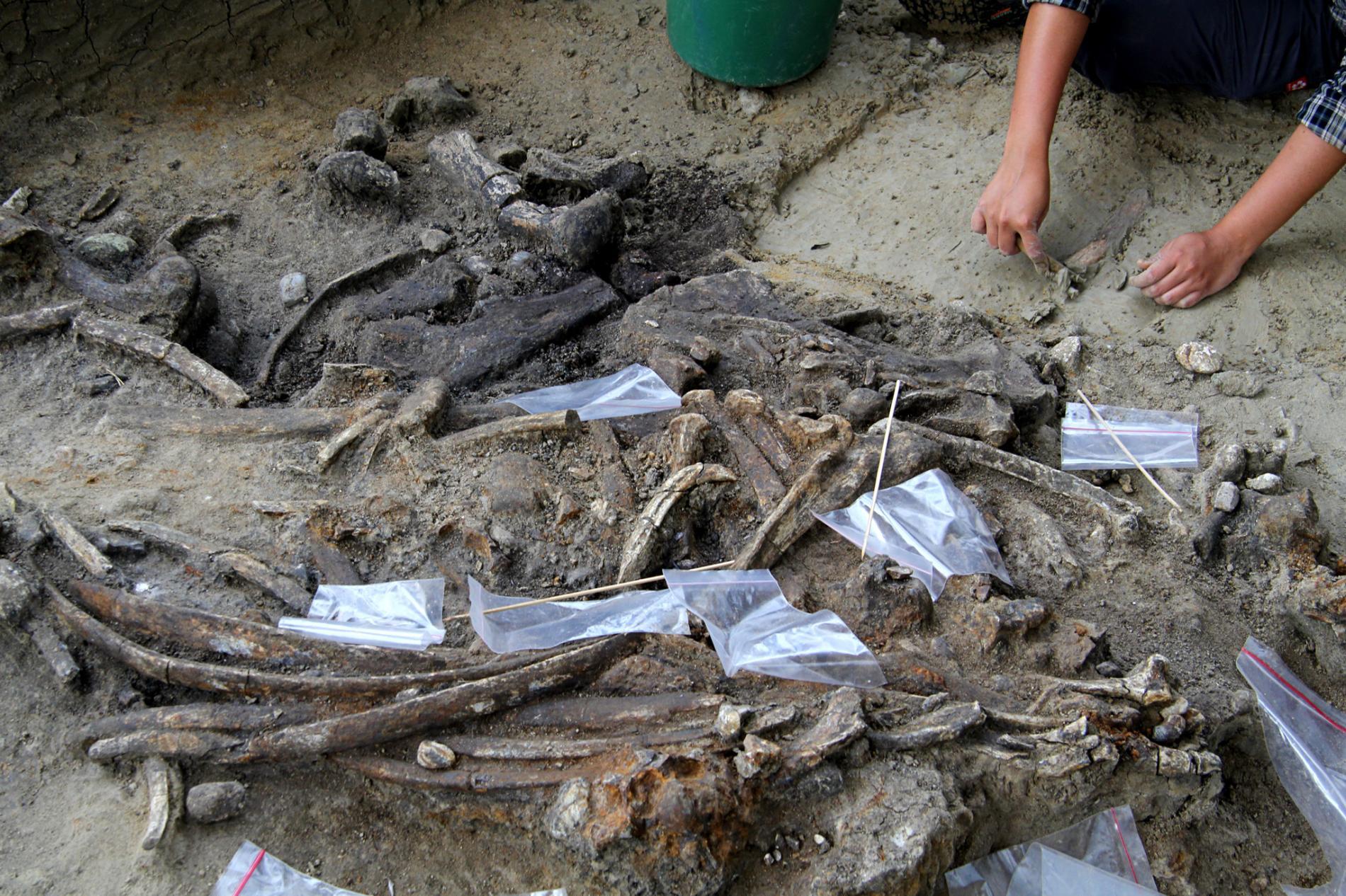 Filippine reperti archeologici