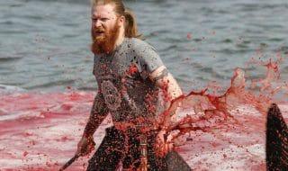 grindadráp faroe massacro balene