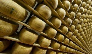 parmigiano reggiano re dei formaggi