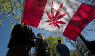 canada legalizzazione marijuana