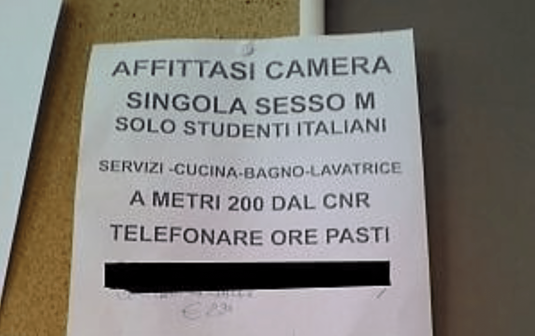 pisa affitto solo italiani