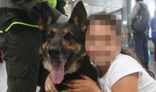 cane poliziotto colombia