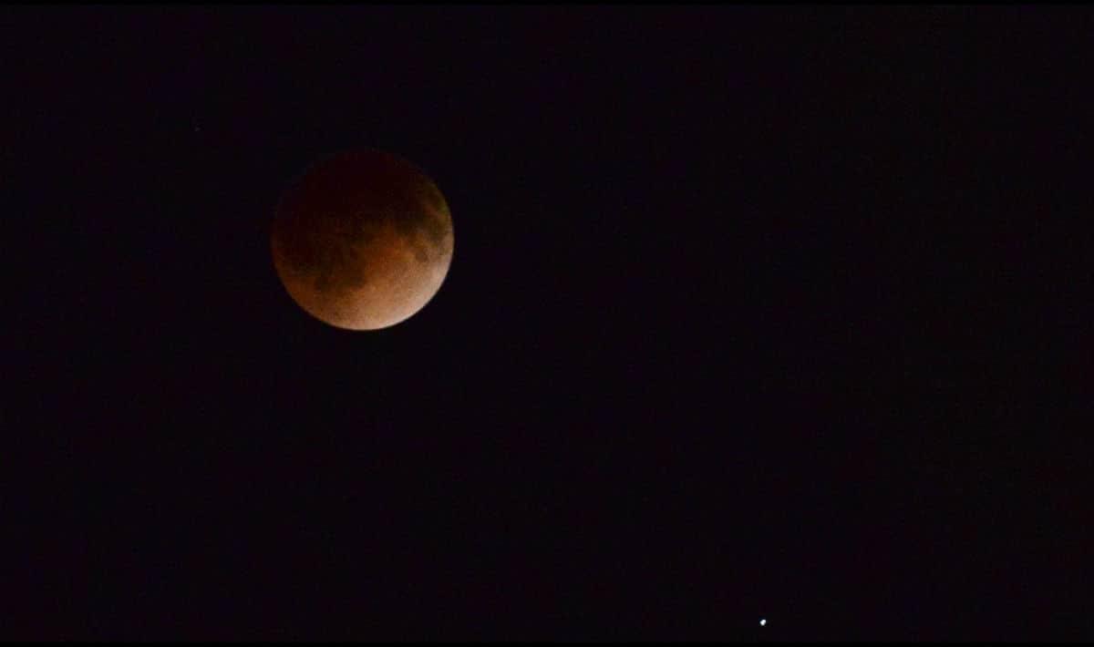 cristoforo colombo eclissi
