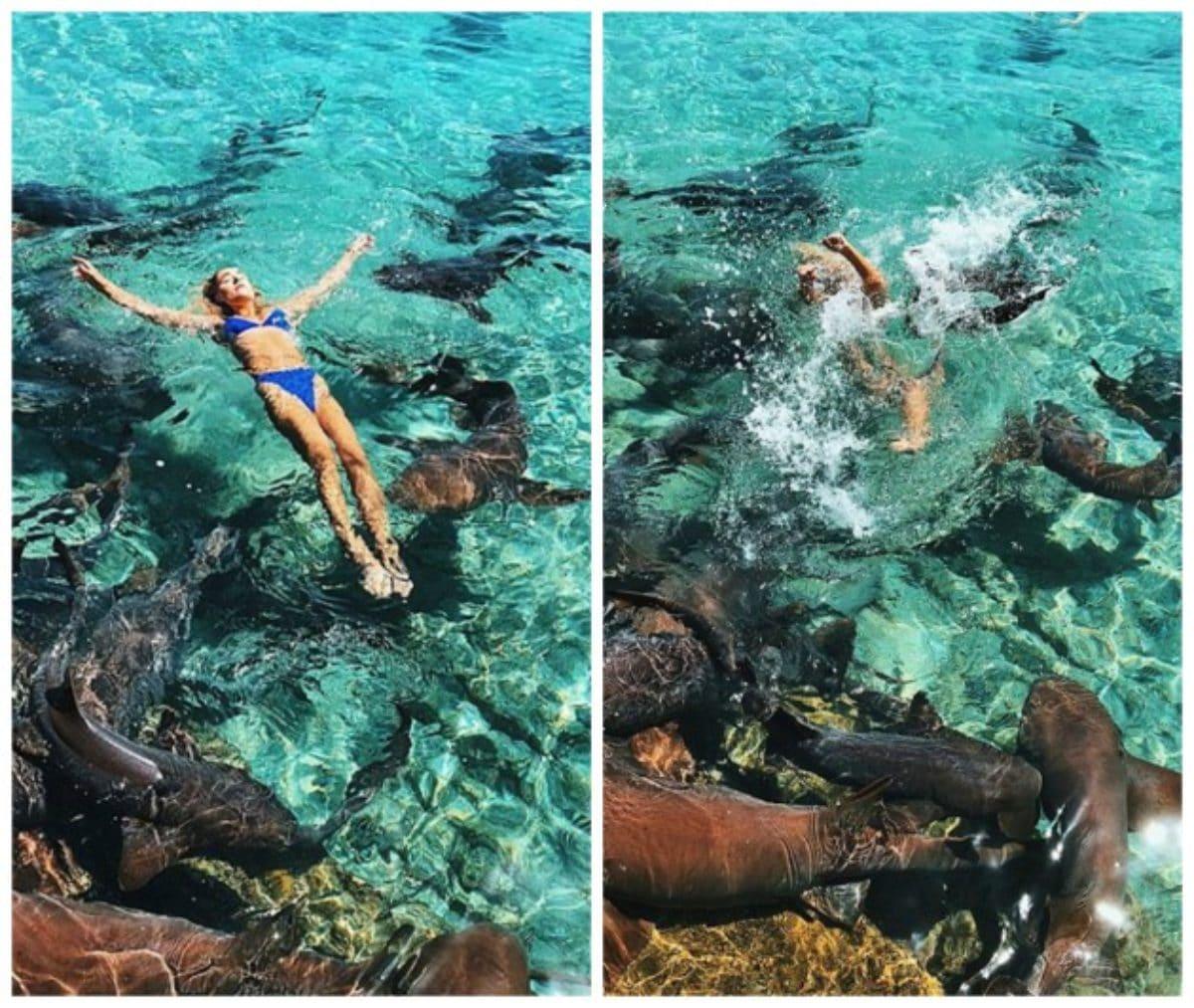 instagram modella squalo