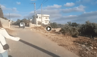 Israele news spari volontaria