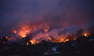 incendi grecia causa stato