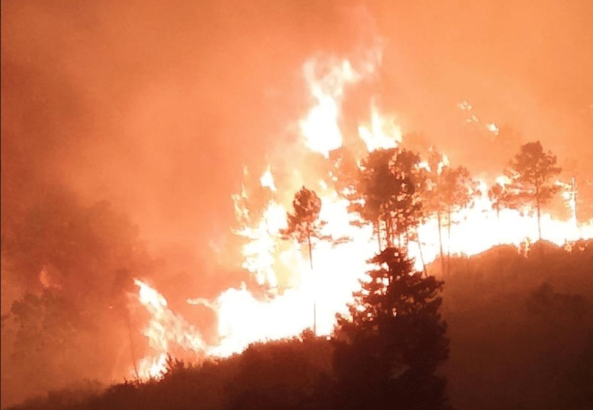 incendio calci pisa