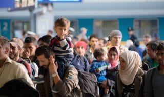 onu idlib disastro umanitario