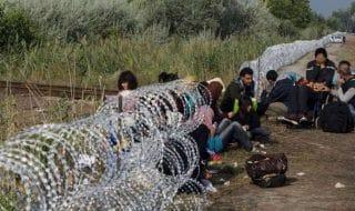 ungheria espulsioni richiedenti asilo