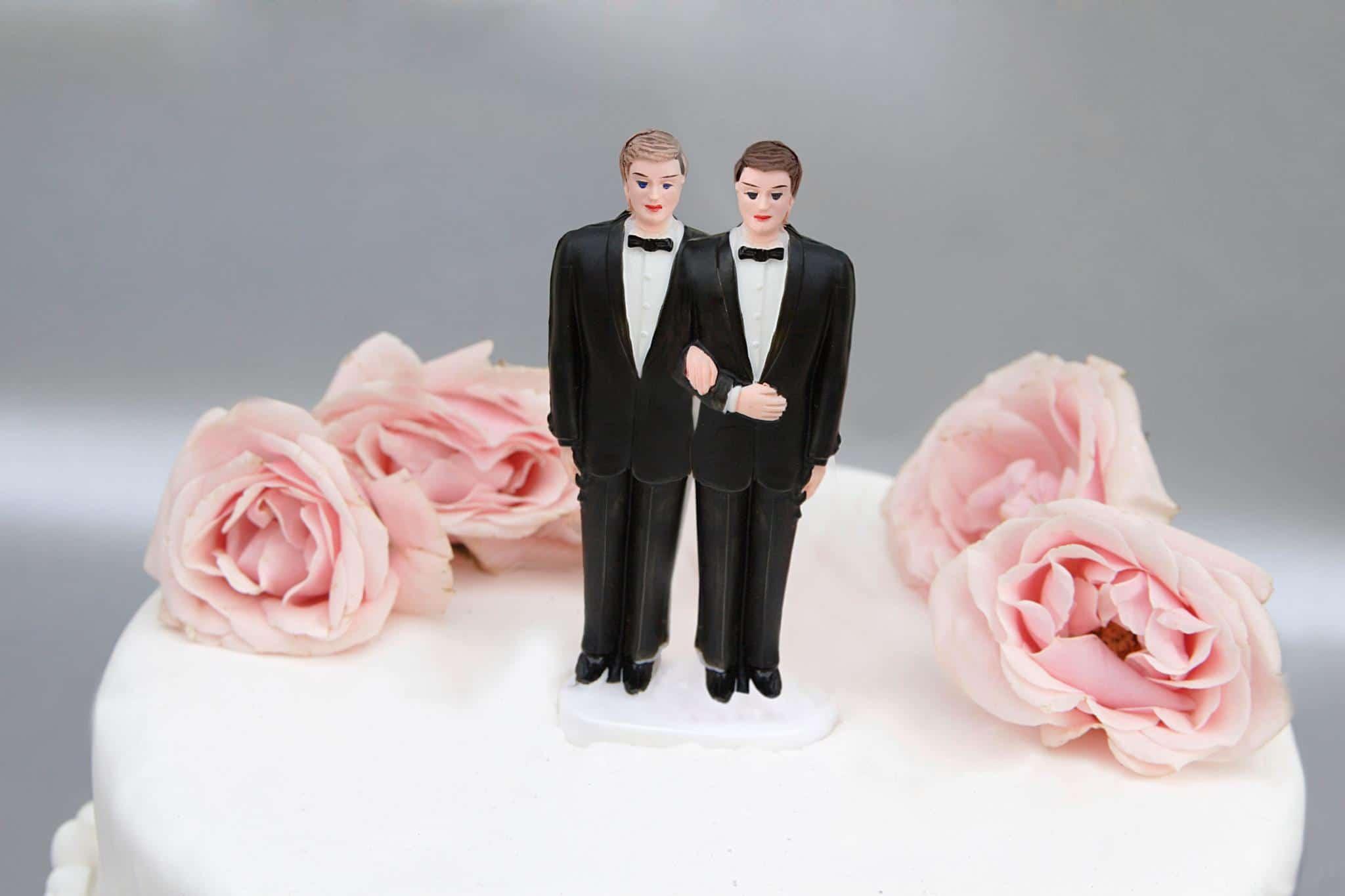 Torta coppia gay