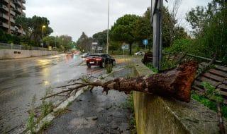 scuole chiuse roma oggi 30 ottobre
