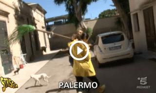 Striscia la Notizia Stefania Petyx aggredita Palermo