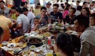 carne di cane Hanoi divieto