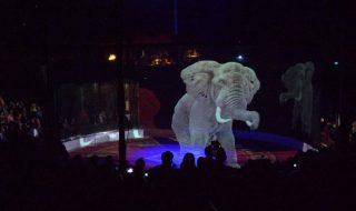 circo animali ologrammi