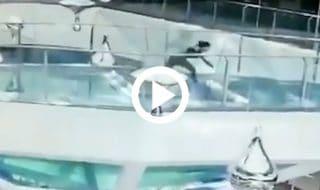 cade vasca squali