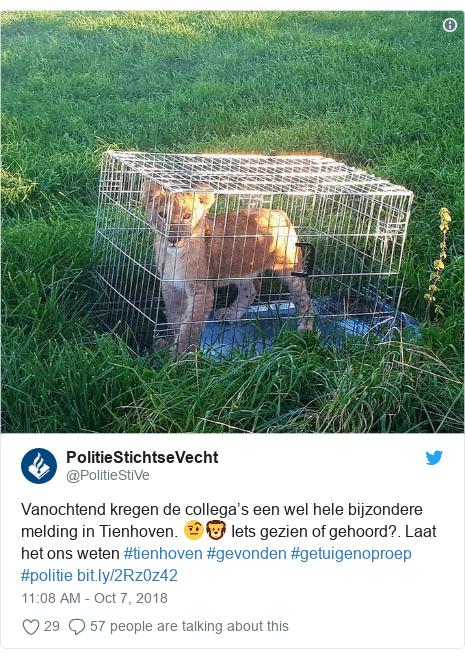 leone olanda