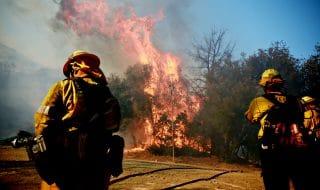 california incendio malibu morti