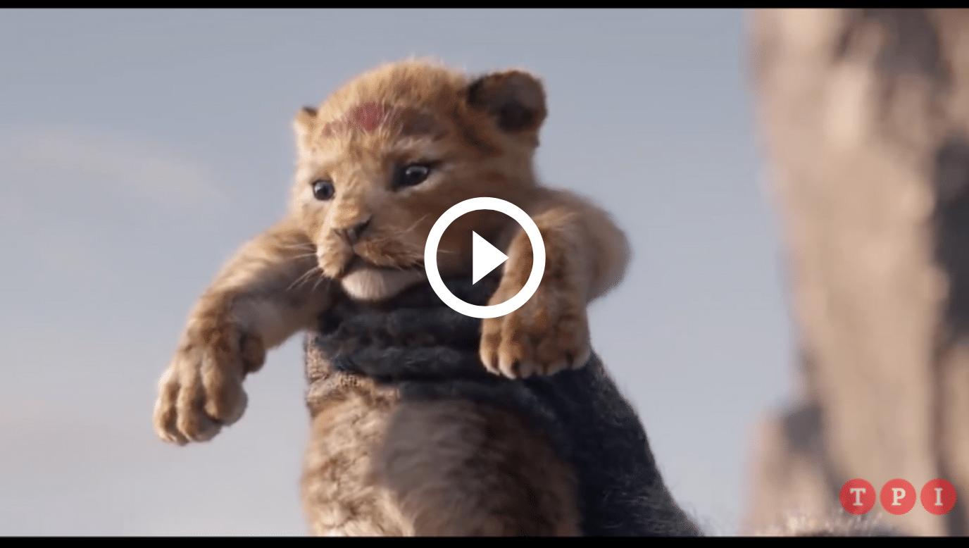Il re leone d cose che non potete sapere sul classico animato