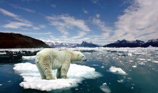 rapporto clima