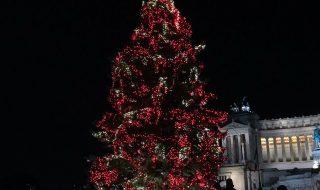 albero di natale roma 2018 acceso