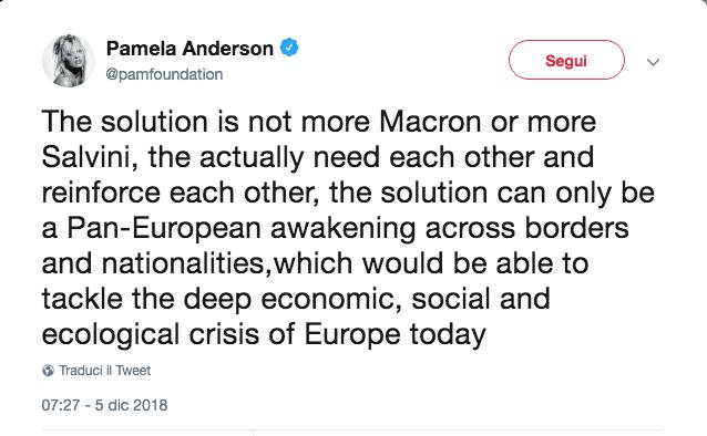 Pamela Anderson contro Matteo Salvini via twitter: