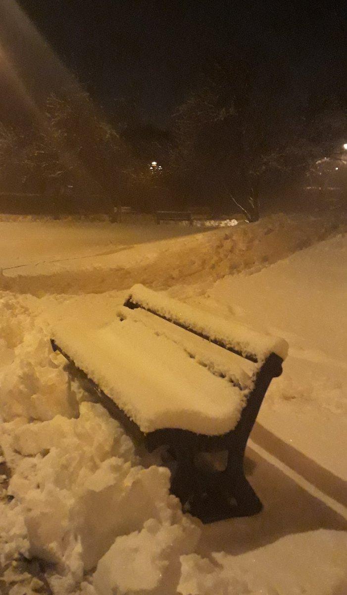 Bologna Neve oggi 31 gennaio 2019