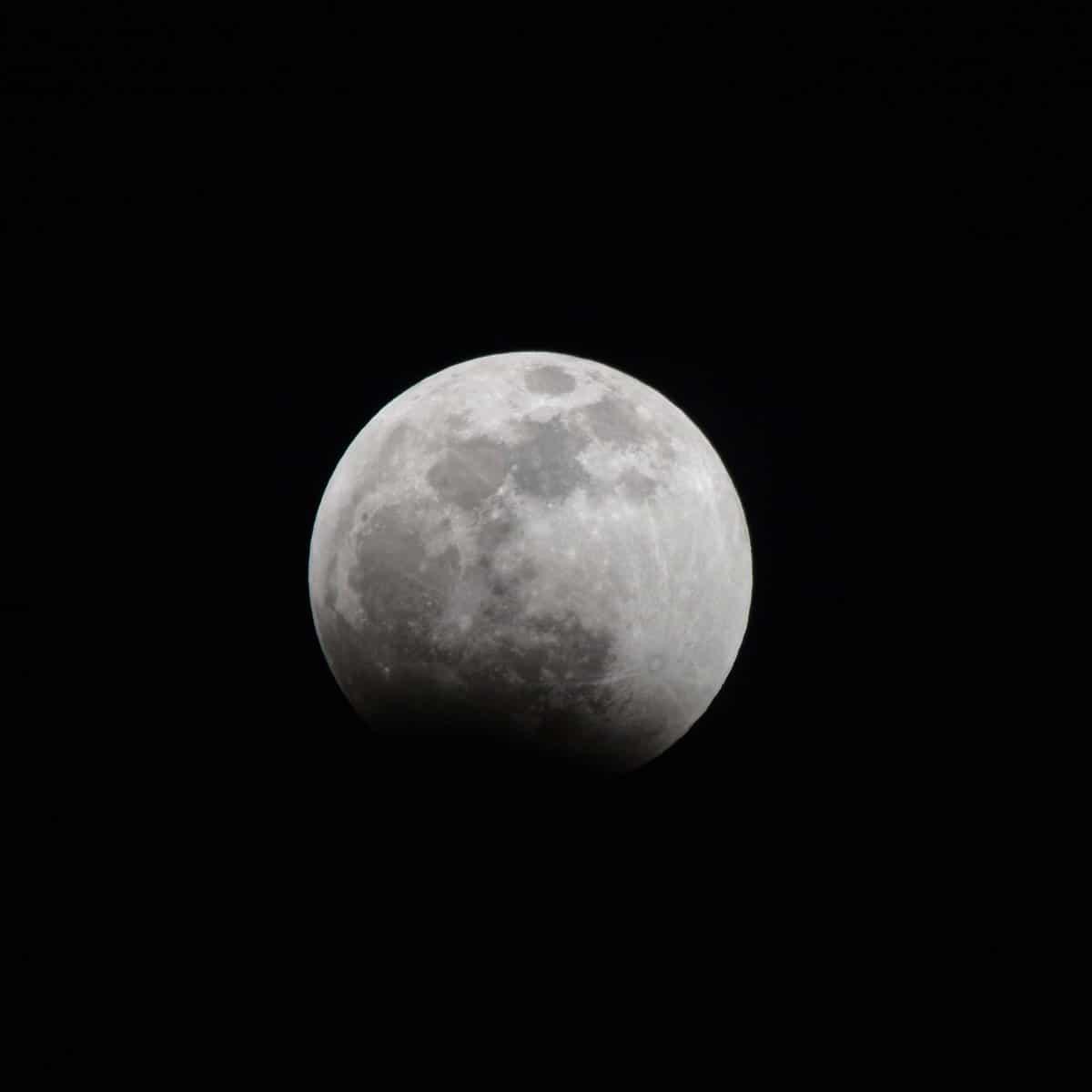 eclissi luna 21 gennaio foto