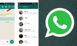 whatsapp inoltra messaggi