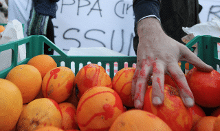 san ferdinando arance italiane