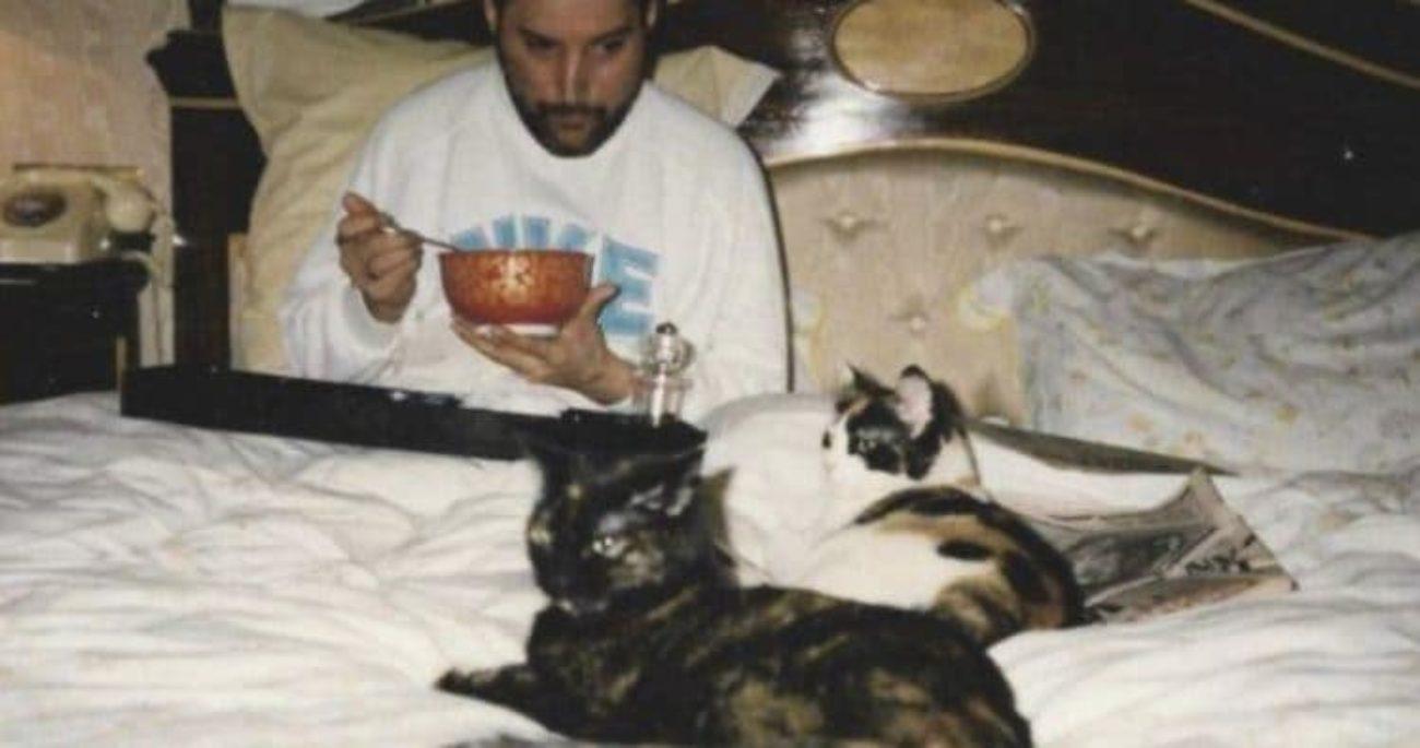 freddie mercury gatti