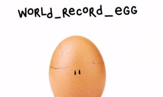 uovo instagram rotto messaggio