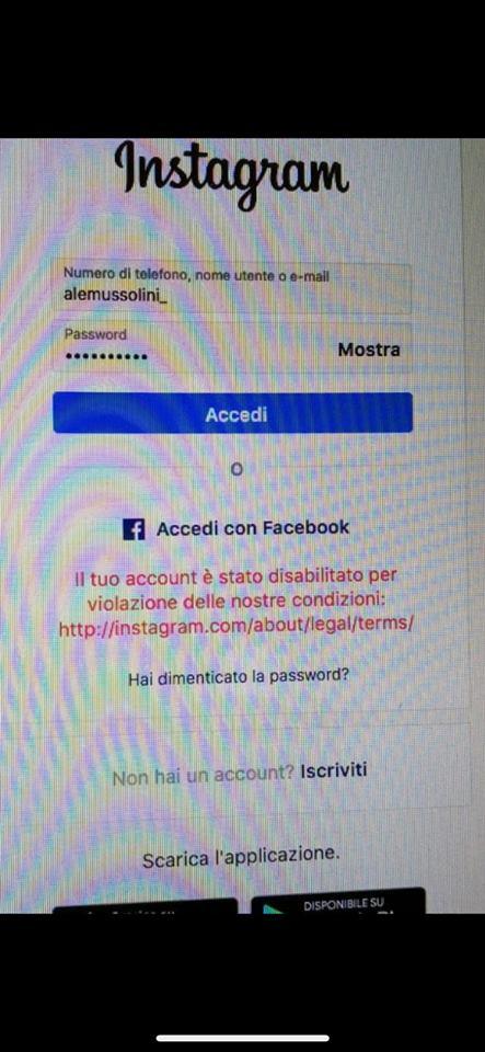 alessandra mussolini account instagram