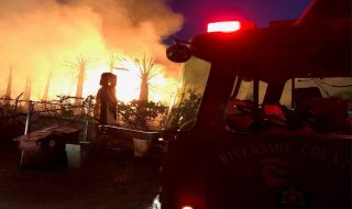 coachella in fiamme