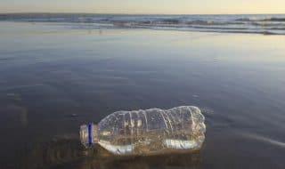 rimini vieta plastica