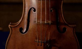 alberi violini Stradivari