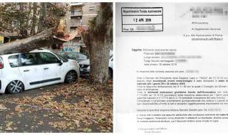 auto distrutte mlatempo roma