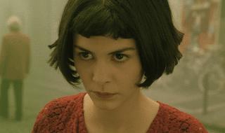Il favoloso mondo di Amélie mockumentary