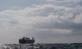 nave saudita armi italia